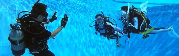 DISCOVER SCUBA DIVER ディスカバースクーバダイビング(体験ダイビング)
