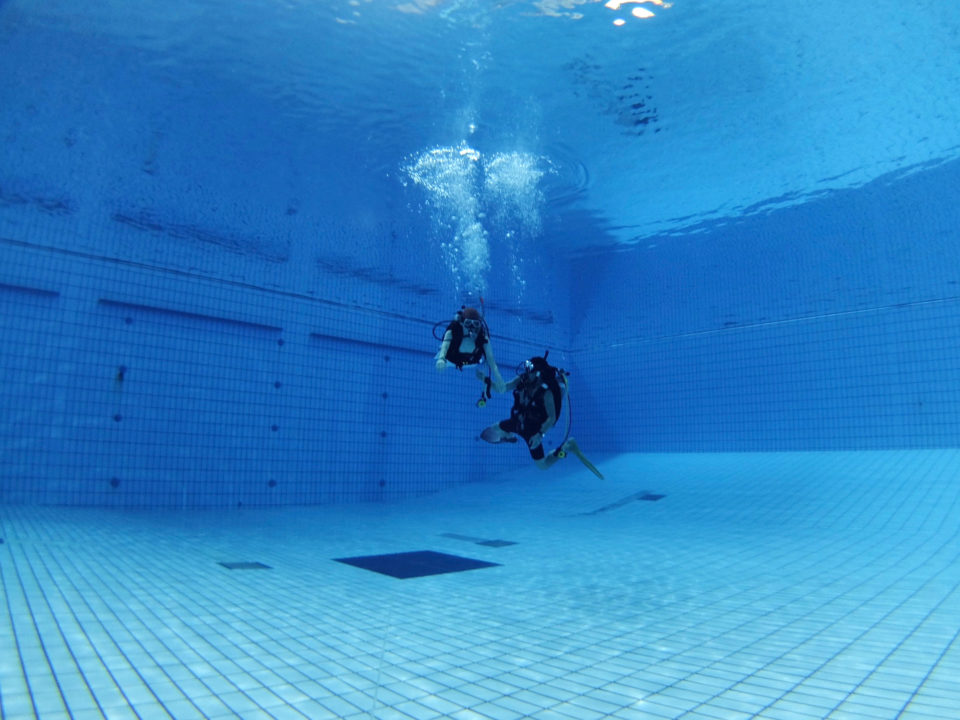 4月3日(水)開催</br>リフレッシュプールダイブ/</br>プール体験ダイビング/</br>スキンダイブ&ドルフィンスイム練習