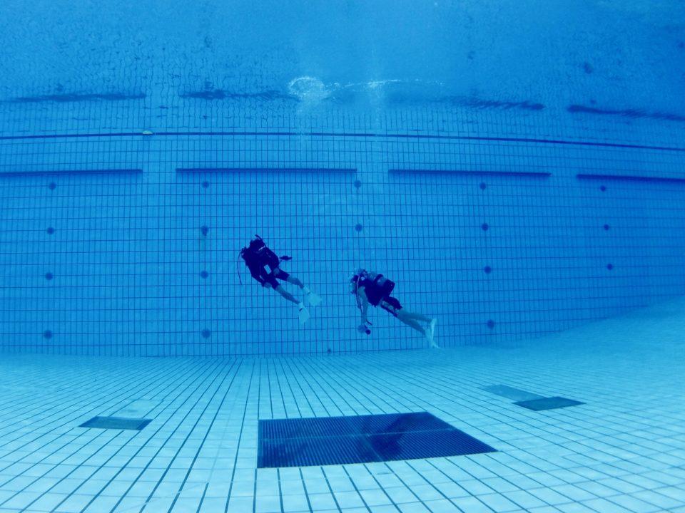 2月24日(月・祝)開催</br>リフレッシュプールダイブ/</br>プール体験ダイビング/</br>スキンダイブ&ドルフィンスイム練習